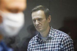 Trợ lý kêu ca sức khỏe Navalny đang xấu đi