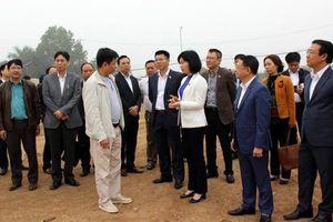 60 dự án 'ôm' 2.100 ha đất tại huyện Mê Linh chậm triển khai