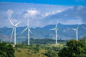Quảng Bình: Chấp thuận chủ trương đầu tư Dự án trang trại điện gió BT1 hơn 3.600 tỷ đồng