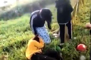Điều tra nhóm thanh niên đánh dã man một cô gái tại Tây Ninh