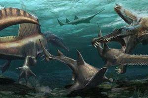 Hàng trăm chiếc răng hóa thạch hé lộ bất ngờ về loài khủng long hung ác
