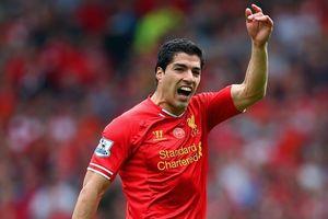 Liverpool sẵn sàng đón Luis Suarez trở lại
