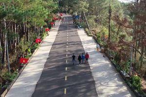 Điểm nhấn đặc biệt của Tiền Phong Marathon 2021