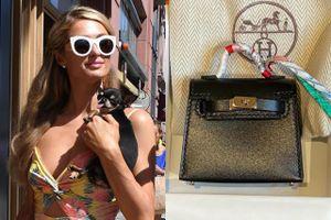 Paris Hilton mua túi Hermès 5.500 USD cho thú cưng