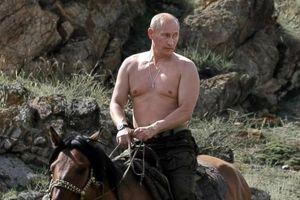 Tổng thống Putin tiết lộ sự cố ngã ngựa