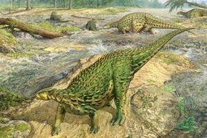 Loài khủng long kỳ quái có da gắn gai tua tủa như đinh tán