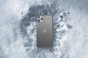 iPhone 11 Pro rơi xuống hồ băng lạnh cóng hơn 1 tháng và câu chuyện khó tin