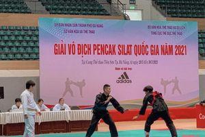 Thanh Hóa có 7 võ sỹ vào chung kết Giải Pencak Silat vô địch toàn quốc