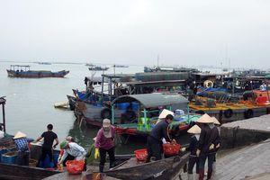 Móng Cái: Nhức nhối nạn khai thác thủy sản trái phép