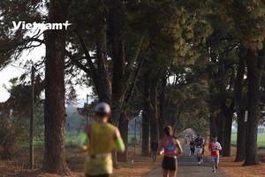 Gần 5.000 vận động viên Marathon đua tài ở cung đường Pleiku
