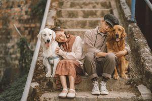 Đôi uyên ương chụp ảnh cưới cùng cún cưng ở Đà Lạt