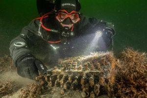 Tình cờ cỗ máy huyền thoại Enigma của Đức Quốc xã được tìm thấy ở biển Baltic
