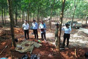 Phát hiện thêm 6 hài cốt liệt sỹ tại huyện biên giới Lộc Ninh, Bình Phước
