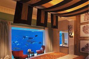 Top 10 nhà hàng, khách sạn dưới nước ấn tượng bậc nhất thế giới