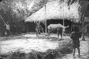 Công bố 2.000 tài liệu về Việt Nam từ thế kỷ 17 đến giữa thế kỷ 20 và mối quan hệ với nước Pháp