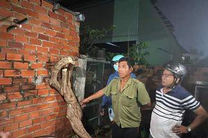 Vũng Tàu: Bắt kẻ cưa cây hoa giấy ở Bãi Sau