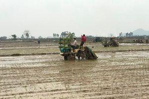 Phát triển kinh tế nông thôn, nâng cao đời sống vật chất, tinh thần của nông dân
