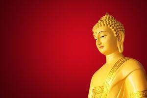 'Ta là Phật đã thành, chúng sinh là Phật sẽ thành' trích từ kinh nào?