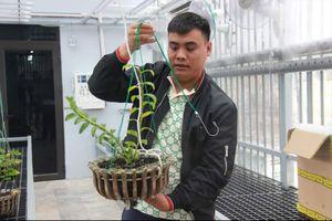 Thực hư lan 250 tỷ ở Quảng Ninh, công an nói gì?