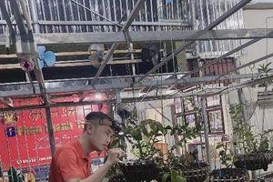 Nghệ nhân Phan Thanh Tùng lần đầu kể về những thăng trầm của nghề trồng lan