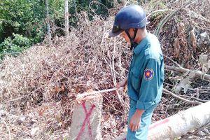 Chiếm đất rừng ở Khánh Thượng