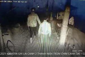 Clip trộm đột nhập nhà dân lấy đi 4 con chim cảnh đắt tiền