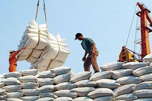 Xuất khẩu gạo giảm mạnh nhất trong nhóm nông, lâm, thủy sản