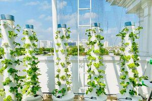 Mướt mắt vườn rau thủy canh thiết kế hiện đại trong nhà sao Việt
