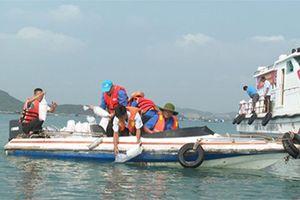 Thả 1 triệu con giống tái tạo nguồn lợi thủy sản tại Khu bảo vệ hệ sinh thái biển Rạn Trào