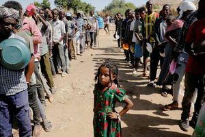 1.900 người thiệt mạng vì các cuộc thảm sát ở Tigray