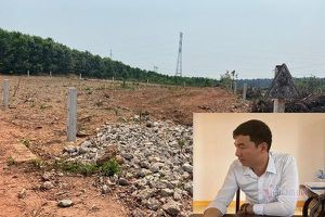 'Quan xã' vô tư xẻ đất rừng phân lô cấp cho dân ở Quảng Trị