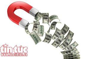 Tổ chức huy động vốn trái phép, lừa đảo hàng tỷ đồng
