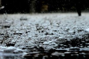 Bạn hoàn toàn có thể ngửi thấy 'mùi' của mưa vì lý do này