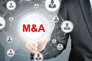 Nhiều thương vụ M&A dần được hé lộ trong mùa ĐHĐCĐ năm nay