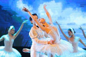 Phụ huynh đề nghị đặc cách cấp bằng THCS cho học sinh trường múa