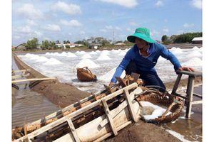 Diêm dân Bến Tre mất mùa muối