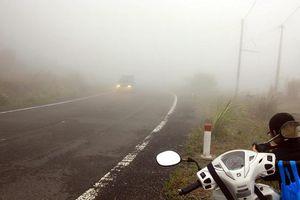 Đi trong sương mù