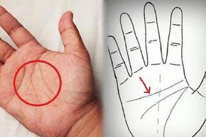 Bàn tay phụ nữ có 4 đặc điểm này, cả đời giàu sang sung túc