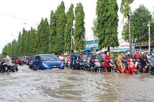 Dự án chống ngập lụt TP. Cần Thơ nguy cơ đội vốn gần 4.500 tỷ đồng