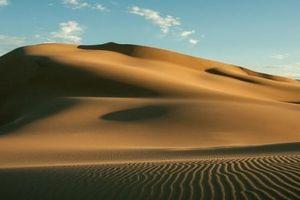 Top 5 trải nghiệm tuyệt vời mà bạn nên thử khi đi du lịch ở Mông Cổ
