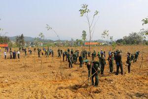 Góp phần hiện thực hóa mục tiêu trồng 1 tỷ cây xanh