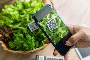 Truy xuất nguồn gốc sản phẩm nông nghiệp - kinh nghiệm quốc tế và khuyến nghị cho Việt Nam