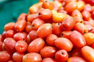 Những bài thuốc chữa bệnh từ quả nhót