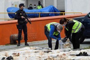 Cảnh sát Tây Ban Nha bắt giữ 100 đối tượng của băng đảng buôn bán ma túy