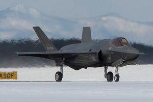 Vì Trung Quốc, không quân Nhật Bản phải 'đem dao mổ trâu giết chim sẻ'