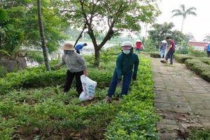 Huyện Ứng Hòa: Ra quân cắt tỉa, chăm sóc 'Vườn hoa ơn Bác'