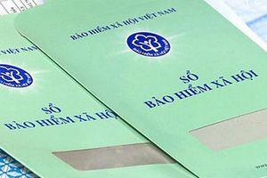 Quảng Bình: Năm 2020 có 67.541 người tham gia BHXH bắt buộc