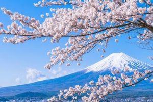 Phát động cuộc thi viết tiếng Nhật cho người Việt Nam với chủ đề: Tôi muốn du học tại Nhật Bản