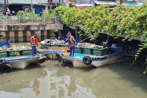 Nguyên nhân cá chết hàng loạt trên kênh Nhiêu Lộc-Thị Nghè