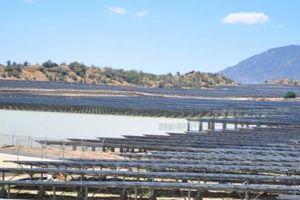Chặn đứng xâm phạm của điện mặt trời ảnh hưởng đến hồ thủy lợi